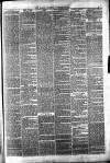 Halifax Guardian Saturday 24 November 1877 Page 3