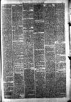 Halifax Guardian Saturday 15 December 1877 Page 7