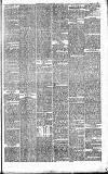 Halifax Guardian Saturday 26 January 1884 Page 7