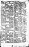 Caernarvon & Denbigh Herald Saturday 08 December 1866 Page 5
