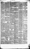 Caernarvon & Denbigh Herald Saturday 22 December 1866 Page 5