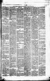 Caernarvon & Denbigh Herald Saturday 29 December 1866 Page 5