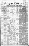 Bridgend Chronicle, Cowbridge, Llantrisant, and Maesteg Advertiser Friday 06 February 1880 Page 1