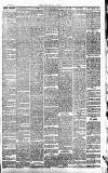 Middleton Albion Saturday 26 March 1881 Page 3