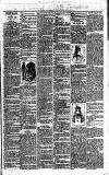 Middleton Albion Saturday 15 July 1893 Page 3