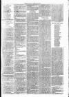 Clare Advertiser and Kilrush Gazette Saturday 11 June 1887 Page 7