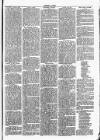 Clare Advertiser and Kilrush Gazette Saturday 17 December 1887 Page 3