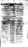 Cashel Gazette and Weekly Advertiser Saturday 03 October 1874 Page 1