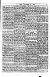 Y Llan Saturday 19 November 1881 Page 7
